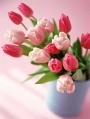 8 марта - женский праздник!